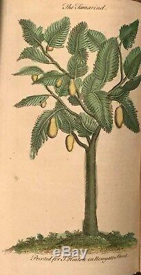 1753 Universal Magazine Rare Engravings Birds Orrery Trees Lizard Hamlet Diving