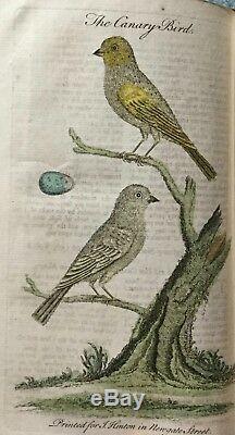 1754 UNIVERSAL MAGAZINE RARE ENGRAVINGS BIRDS PLANT COFFEE POPPY HUMMINGBIRD &c