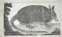 1766 London Magazine Stamp Act Loi De La Guerre D'indépendance Imposition Sans Représentation