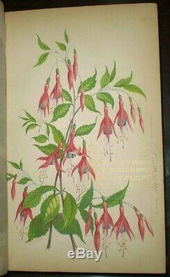 1851, Magazine Union Sartain De La Littérature Et L'art, Tome VIII & Ix, Illustrated