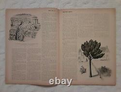 Signé! J. D. Salinger Pretty Mouth Et Green My Eyes. New Yorker 1951 Gell-mann