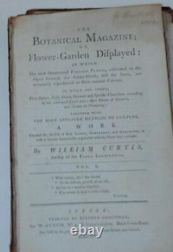 William Curtis / Botanical Magazine Ou Flower-garden Affiché Dans Lequel 1er 1796