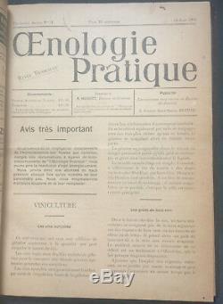 Wine Magazine Faire Grape 32 Questions Rares Cultivating 1908-1910 Œnologie Français
